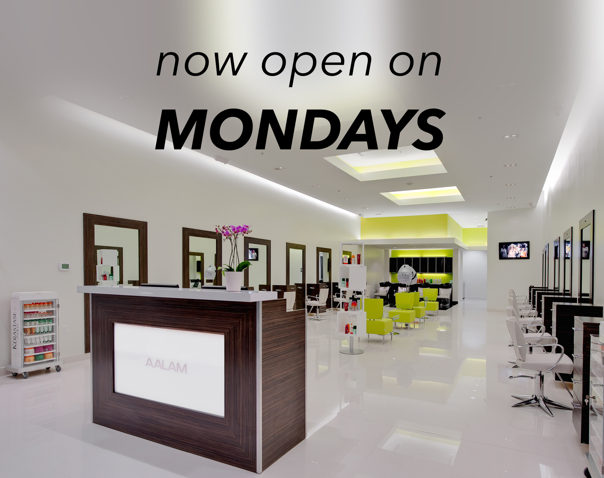 AALAM The salon now open on Mondays Serving North Dallas – Plano – Frisco